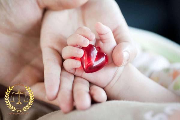 سقط جنین - وکیل کرمان - مشاوره حقوقی کرمان